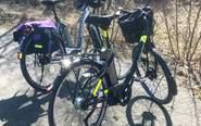 Underhåll din elcykel - här är expertens bästa tips - Per Wickman guidar
