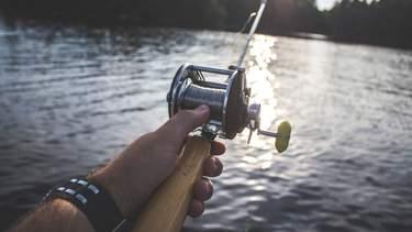 Fiska öring