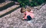 Ted Larsson betygsätter bästa mobiltelefonen för barn