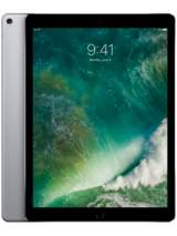 "iPad Pro 12,9"" 256GB 4G Gray en surfplatta från Apple"